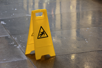 Spine and Brain Injuries Caused by Slip and Falls