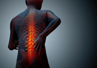 Free consultation for help with a Reno spinal cord injury attorney.